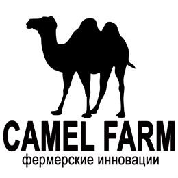 В онлайн-магазине Сamelmilk.Boutique теперь можно купить живое поголовье верблюдов