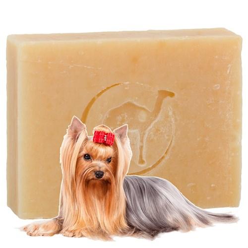 Мыло из верблюжьего молока для собак - фото 6158