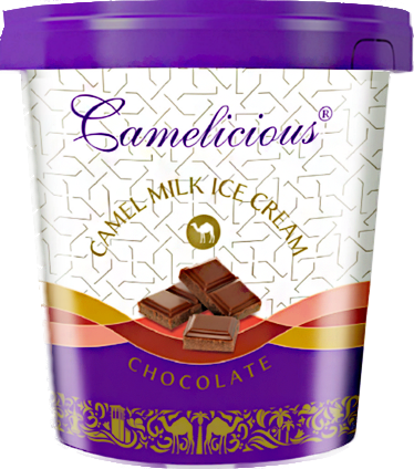 Мороженое из верблюжьего молока - шоколад - фото 6209