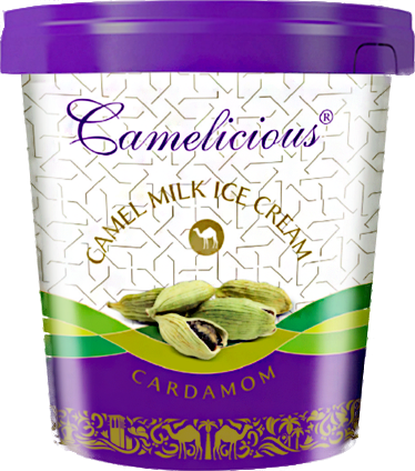 Мороженое из верблюжьего молока - кардамон - фото 6211