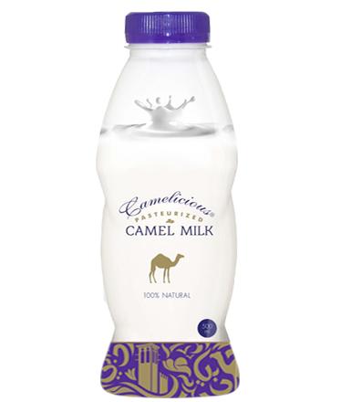 Верблюжье молоко - натуральное  ( свежее ) - фото 7051