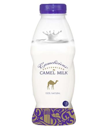 Верблюжье молоко - натуральное  ( свежее ) - фото 7052