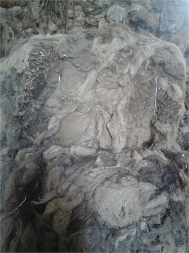Верблюжья шерсть прессованная в брикетах - ( белая ) Россия - фото 7221