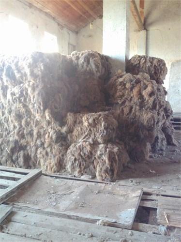 Верблюжья шерсть прессованная в брикетах - ( белая ) Россия - фото 7222