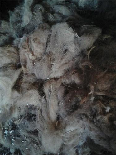 Верблюжья шерсть прессованная в брикетах - ( микс ) Россия - фото 7225