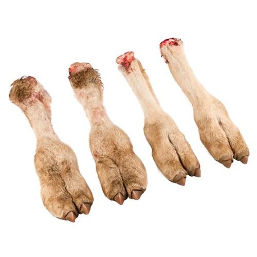 Ноги  верблюжьи ( охлажденные ) - фото 7585