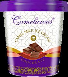 Мороженое из верблюжьего молока - шоколад
