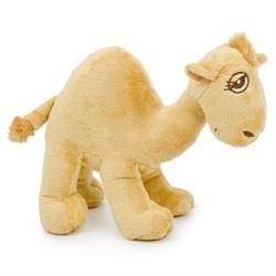 Cut Camel - маленький