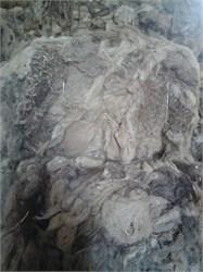 Верблюжья шерсть прессованная в брикетах - ( белая ) Россия