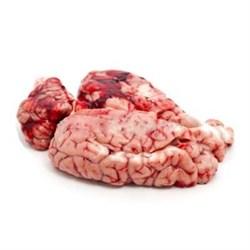 Мозги  верблюжьи ( охлажденные )